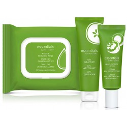 Multi-Protect Lotion bundle essentials by ARTISTRY